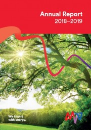 Annual Report MVV Energie CZ 2018-2019